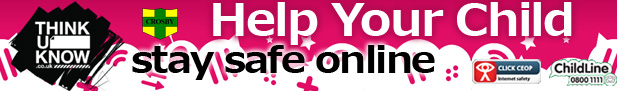 staysafe_online_banner copy
